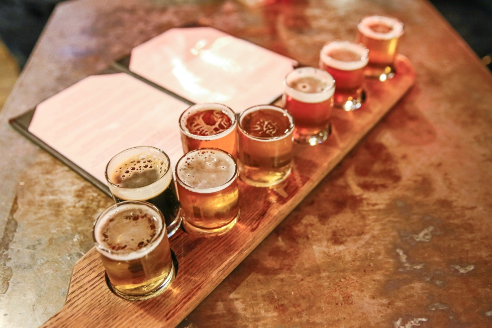 Craft beers in taster glasses are lined up for a beer tasting flight on a bar counter.